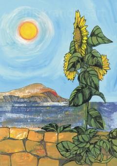 Sunflower, Lesvos
