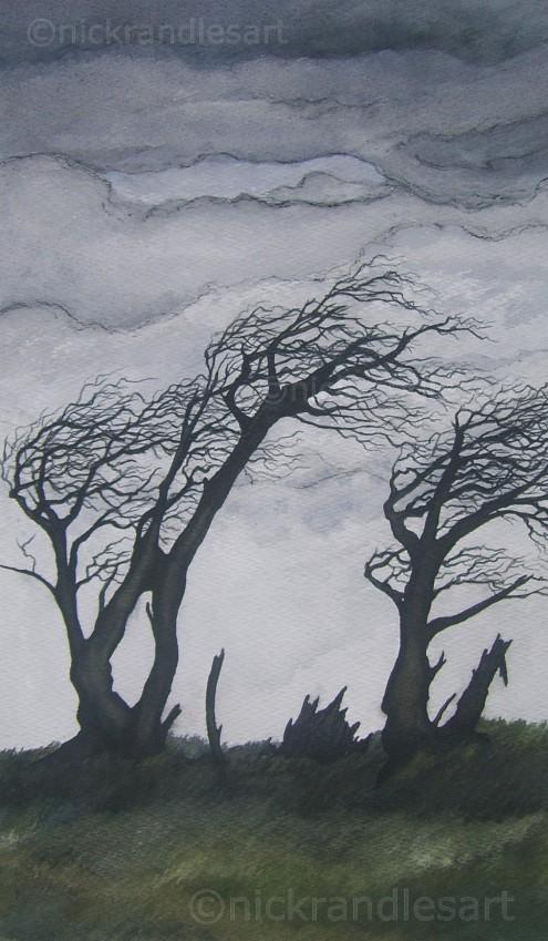 Trees, Cors Fochno 2