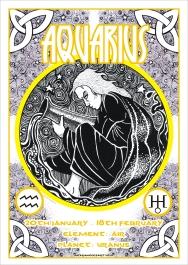 12-Aquarius-nickrandlesart